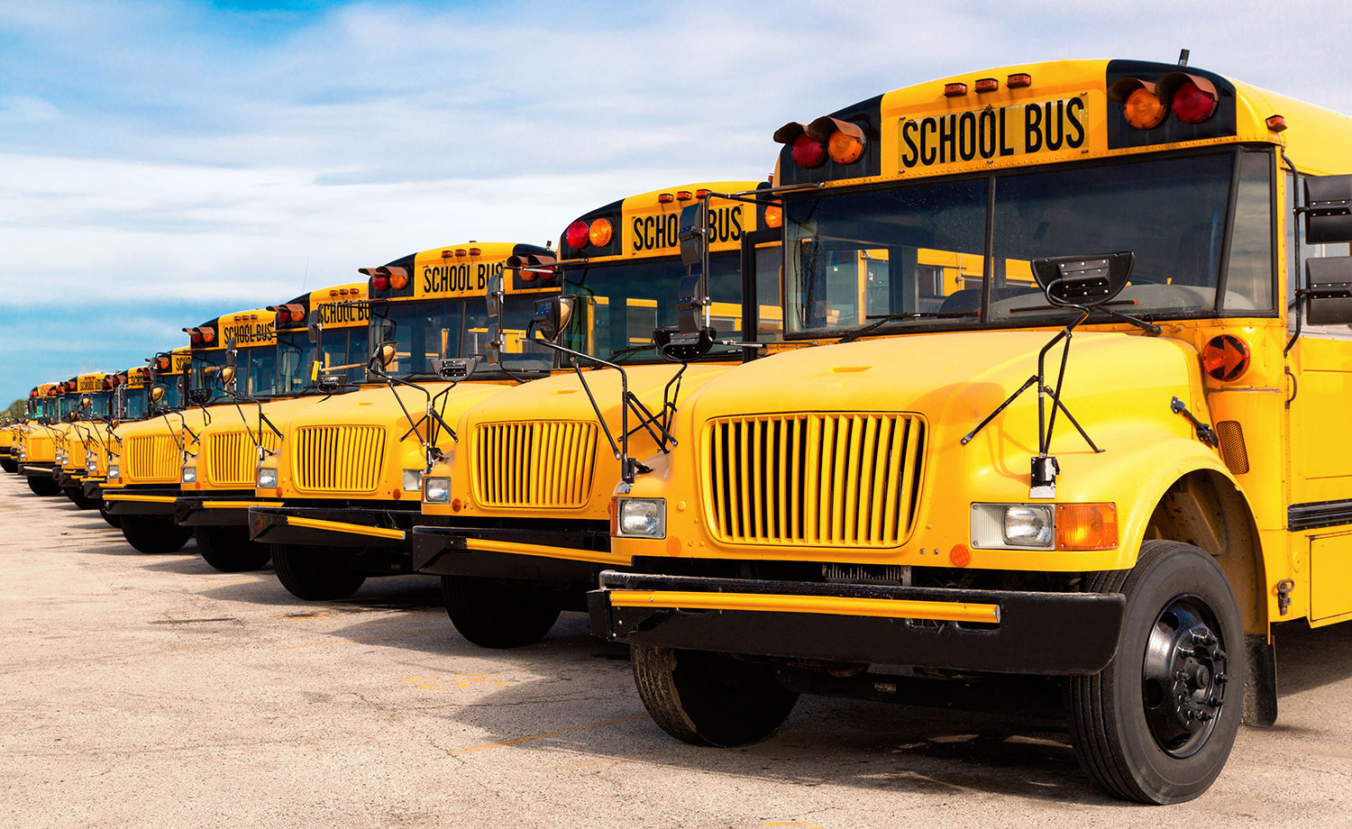 A row of school buses.
