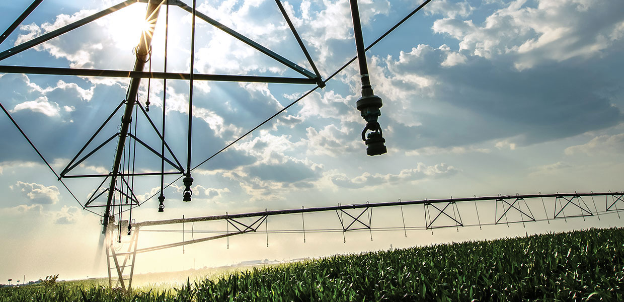 Center pivot irrigation equipment in use.
